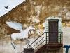 Fotokroužek 2011 - 38. výstava - Zelenáčova šopa, Zlín