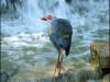 Fotokroužek 2012 - Máme rádi přírodu